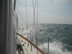 On the Nose to Rovinj