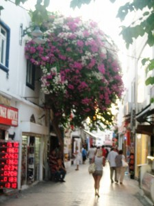 Typical shopping street in old town