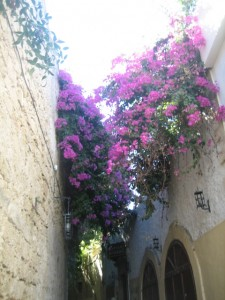 Narrow streets shaded by bougainvilla