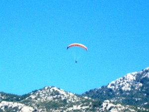 We saw 12-15 parachutes in the air at any given time