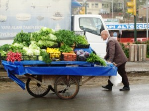 Istanbul is a modern city that still has a push cart economy