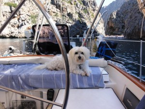 Jolie enjoyed the tiny beach at Cala Calobra on the north coast of Mallorca near Soller. . .