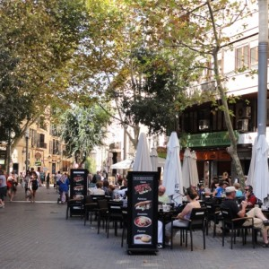 One of Palma's many street cafes. . .